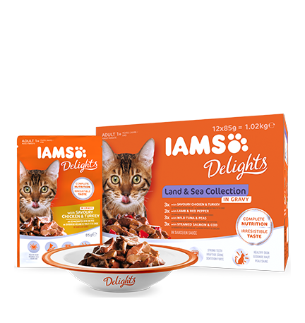 IAMS Delights Land & Sea Collection in Gravy