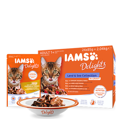 IAMS Delights Land and Sea Collection in Gravy